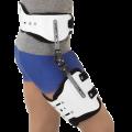Centron Hip